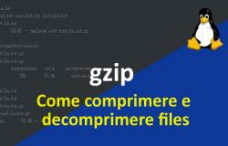 Come comprimere e decomprimere files usando gzip in Linux, con esempi.
